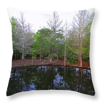 The Gator Hole At Green Cay In Florida Throw Pillow
