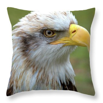 The Gaurdian Throw Pillow