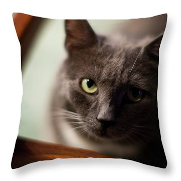 The Gaze Throw Pillow by Mike Reid