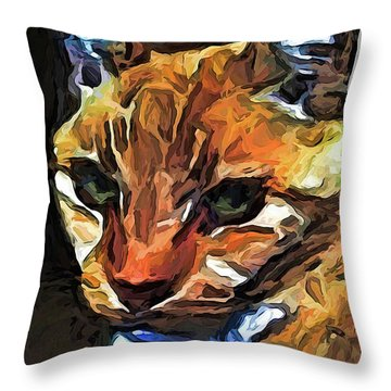 The Gaze Of The Gold Cat Throw Pillow