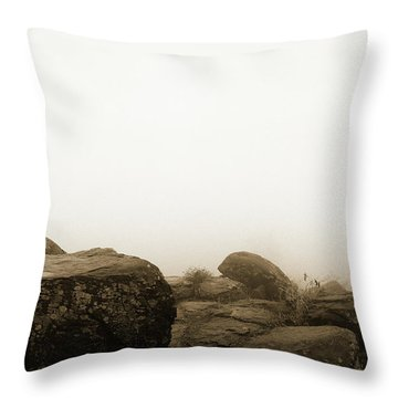 The General's View Throw Pillow