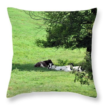 The Girls Hangout Throw Pillow by Jan Amiss Photography