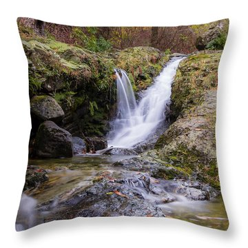 The Glen River Falls Throw Pillow