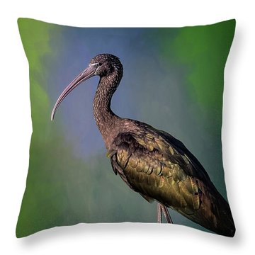 The Glossy Ibis Stroll Throw Pillow