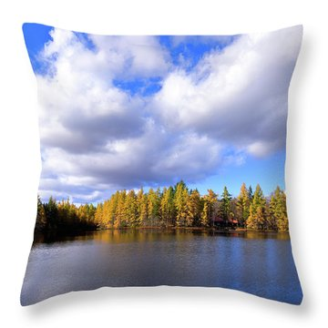 Throw Pillow featuring the photograph The Golden Forest At Woodcraft by David Patterson