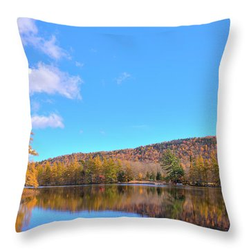Throw Pillow featuring the photograph The Golden Tamaracks Of Woodcraft Camp by David Patterson