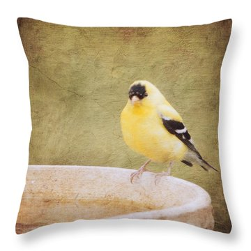 The Goldfinch Painting Effect Throw Pillow by Heidi Hermes