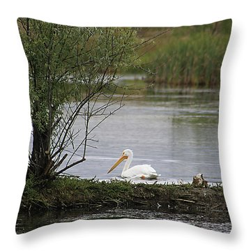 Throw Pillow featuring the photograph The Goose And The Pelican by Alyce Taylor