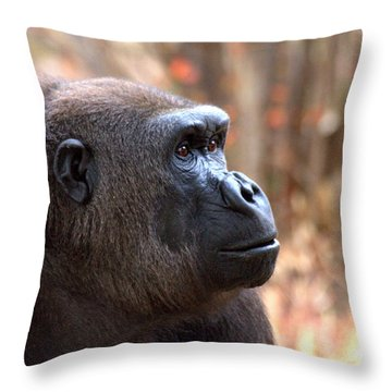the Gorilla thinks Throw Pillow by Ruth Jolly