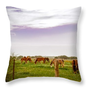Throw Pillow featuring the photograph The Grass Was Greener by Melinda Ledsome