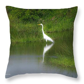 Great Egret By The Waters Edge Throw Pillow