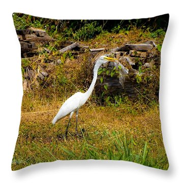 Egret Against Driftwood Throw Pillow