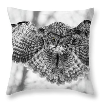 Throw Pillow featuring the photograph The Great Grey Owl In Black And White by Mircea Costina Photography