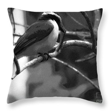 The Great Kiskadee  Throw Pillow
