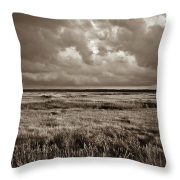 The Great Marsh Throw Pillow