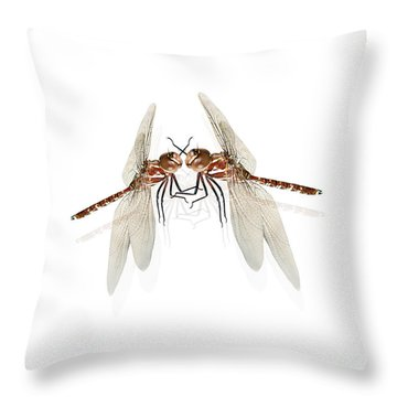 The Great Romanticism Throw Pillow