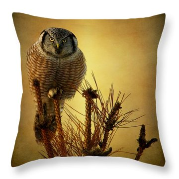 The Great Stare Down Throw Pillow