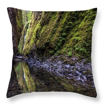Throw Pillow featuring the photograph The Green Canyon Of Oregon by Pierre Leclerc Photography
