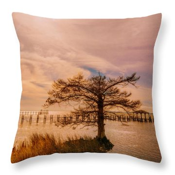 The Green House At Duck  Throw Pillow