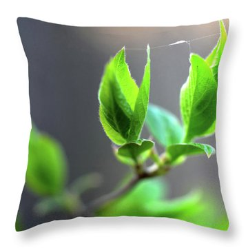 The Green Leaf Throw Pillow