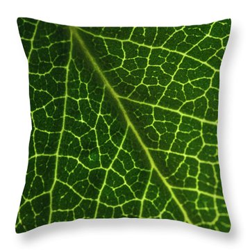 Throw Pillow featuring the photograph The Green Network by Ana V Ramirez