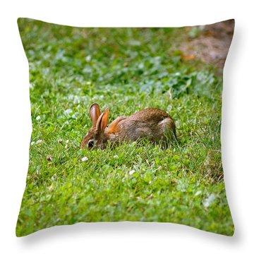 The Greener Grass Throw Pillow