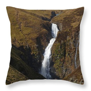 The Grey Mare's Tail Throw Pillow