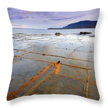 The Grid Throw Pillow by Mike  Dawson