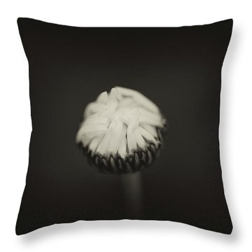 Throw Pillow featuring the photograph The Grieving Night by Shane Holsclaw
