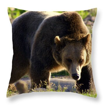 The Grizz Throw Pillow by Marty Koch