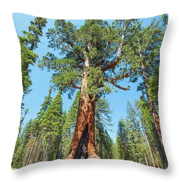 The Grizzly Giant- Throw Pillow