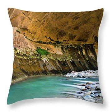 The Grotto Throw Pillow