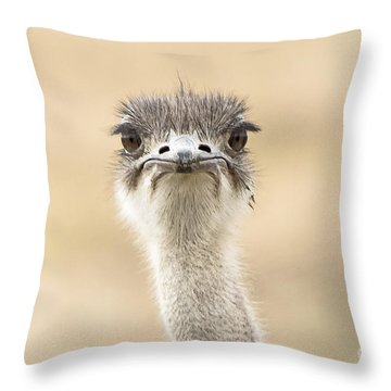 The Grump Throw Pillow by Pravine Chester