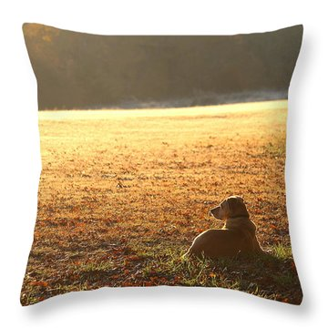 The Guardian Throw Pillow by Sheila Brown