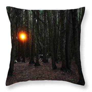 The Guiding Light Throw Pillow by Debbie Oppermann