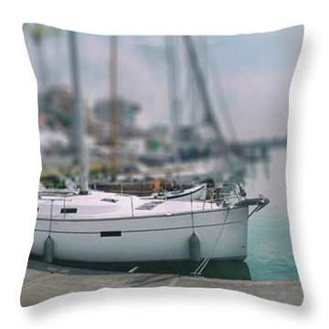 Throw Pillow featuring the photograph the Hague local harbor by Ariadna De Raadt