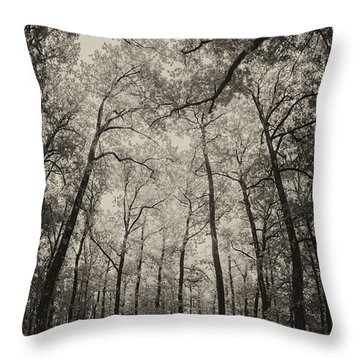 The Hands Of Nature Throw Pillow
