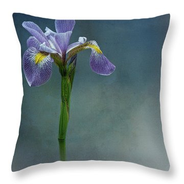 The Harlem Meer Iris Throw Pillow by Chris Lord