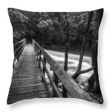 The Hatchery  Throw Pillow