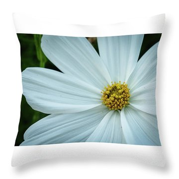 The Heart Of The Daisy Throw Pillow