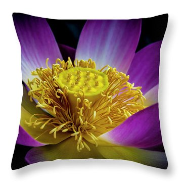 The Heart Of The Lily Throw Pillow