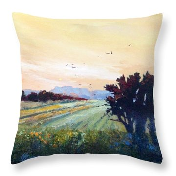 The Heartland Throw Pillow