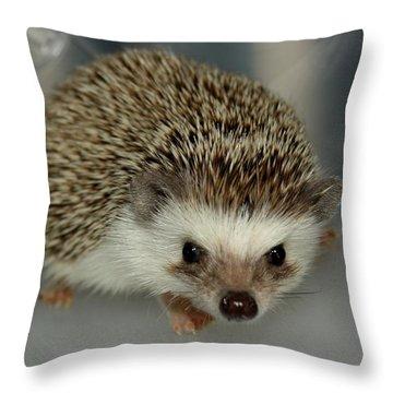 The Hedgehog Throw Pillow