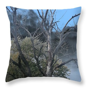 The Height Of Rodomontade Throw Pillow