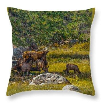 The Herd Keeper Throw Pillow