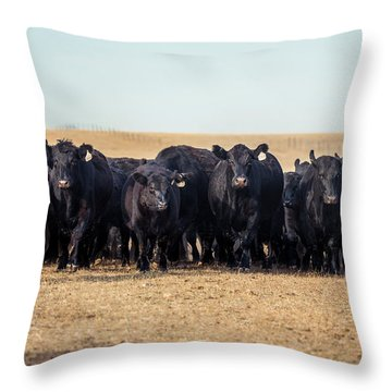 The Herd Rushes In Throw Pillow