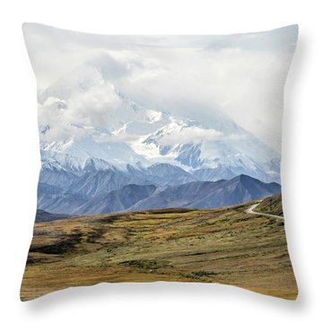 The High One - Denali Throw Pillow