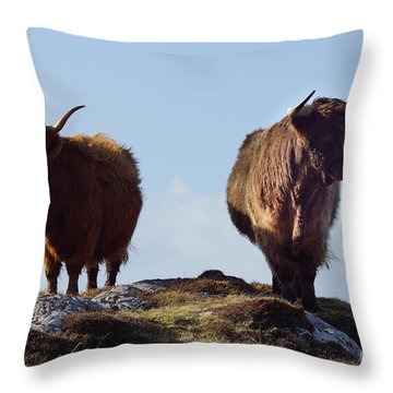 The Highland Cows Throw Pillow