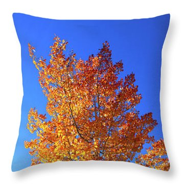 Throw Pillow featuring the photograph The Hillside - Panorama by Shane Bechler