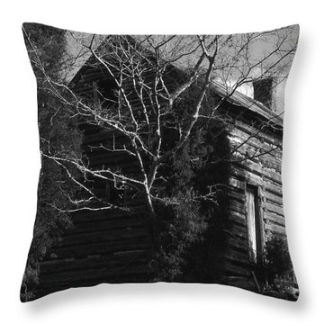 The Homestead Throw Pillow by Richard Rizzo